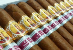 Bolivar Belgravia arrives in the UK