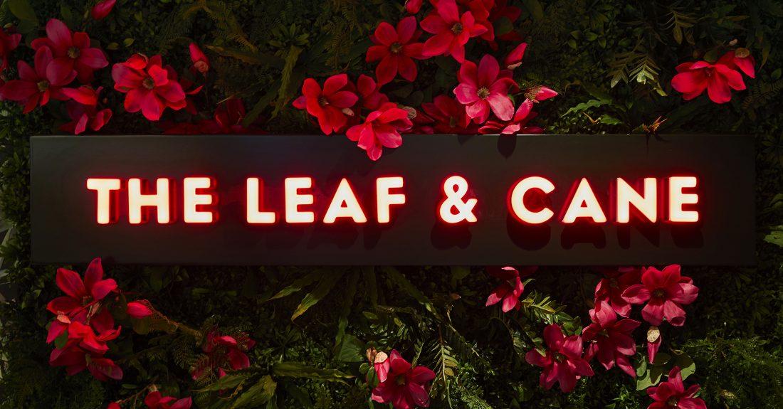 Leaf & Cane opens its doors
